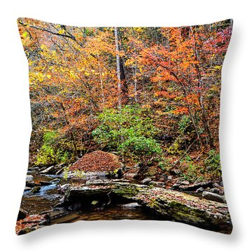 Along Fall Creek Throw Pillow