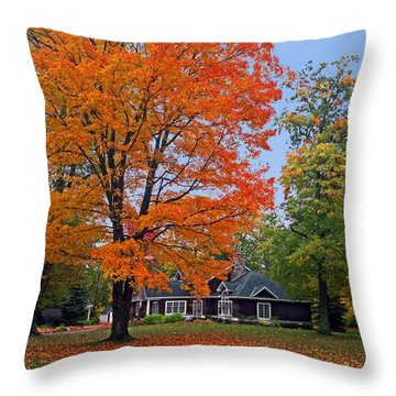Along Lower Shore Drive In Autumn 2014 Throw Pillow