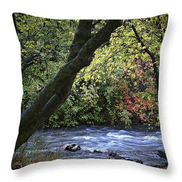 Throw Pillow featuring the photograph Along Swift Waters by Priscilla Burgers