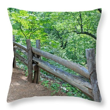 Along The Blue Ridge Parkway IIi Throw Pillow by Suzanne Gaff