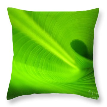 Along The Curve Throw Pillow by C Ray  Roth