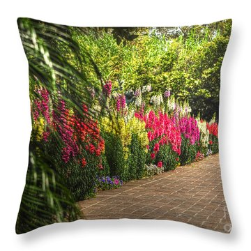 Throw Pillow featuring the photograph Along The Garden Path by Kathy Baccari