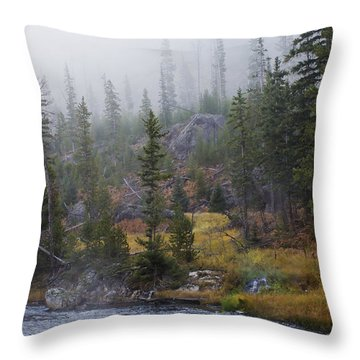 Along The Gibbon In Fall Throw Pillow