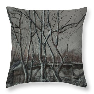 Along The Greenway 2 Throw Pillow by Janet Felts