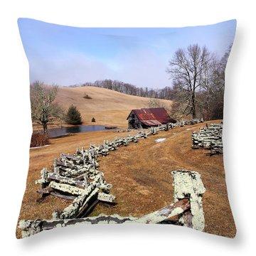 Along The Locust Rails Throw Pillow