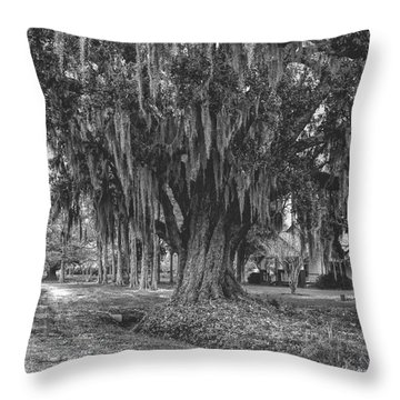 Along The River Road Near Vacherie La Throw Pillow by Kathleen K Parker