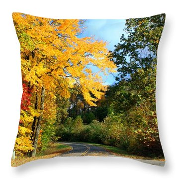 Throw Pillow featuring the photograph Along The Road 2 by Kathryn Meyer
