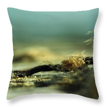 Along The Sea-coast Throw Pillow by Rebecca Sherman