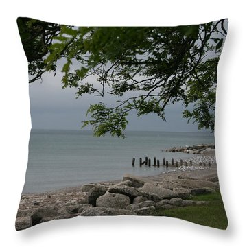 Throw Pillow featuring the photograph Along The Shore by Kay Novy