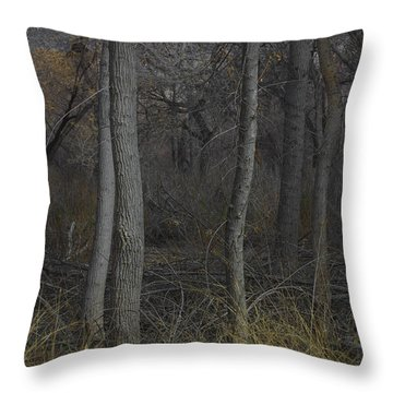 Along The Walking Path Number 10 Throw Pillow