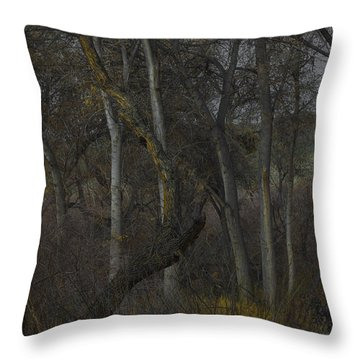 Along The Walking Path Number 14 Throw Pillow