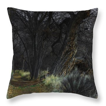 Along The Walking Path Number 17 Throw Pillow