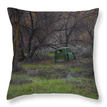 Along The Walking Path Number 2 Throw Pillow