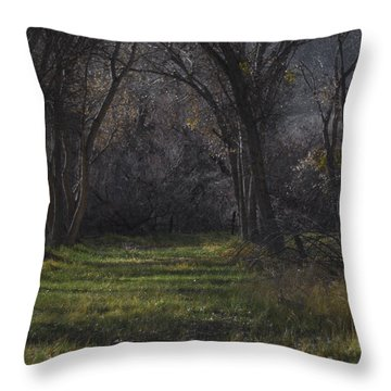 Along The Walking Path Number 20 Throw Pillow