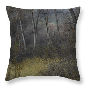 Along The Walking Path Number 7 Throw Pillow