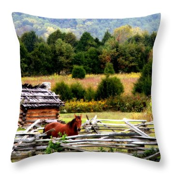 Along The Wilderness Trail Throw Pillow by Karen Wiles