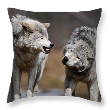 Throw Pillow featuring the photograph Alpha Displeasure by Wolves Only