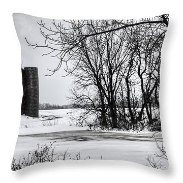 Alpine Barn Michigan Throw Pillow