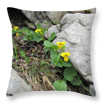 Throw Pillow featuring the photograph Alpine Beauty 1 by Pema Hou