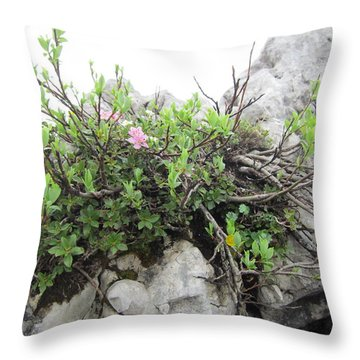 Throw Pillow featuring the photograph Alpine Beauty by Pema Hou