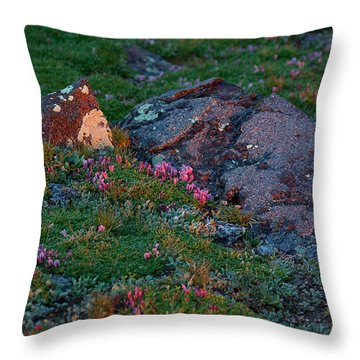 Throw Pillow featuring the photograph Alpine Blush by Jim Garrison