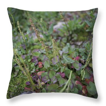 Alpine Color Throw Pillow