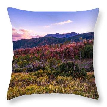 Alpine Fall Throw Pillow