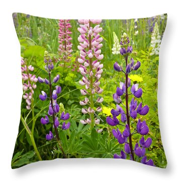 Alpine Lupines Throw Pillow
