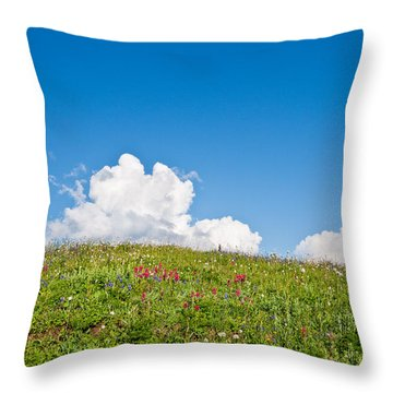 Alpine Meadow And Cloud Formation Throw Pillow