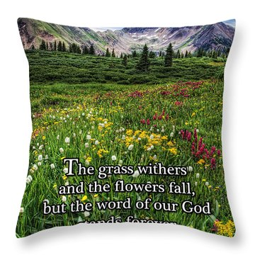 Throw Pillow featuring the photograph Alpine Meadow by Priscilla Burgers