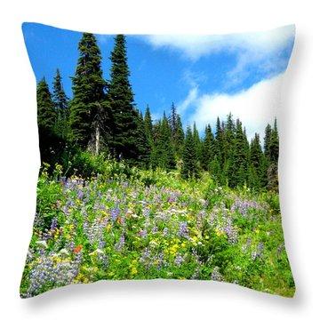 Throw Pillow featuring the photograph Alpine Walk by Kathy Bassett