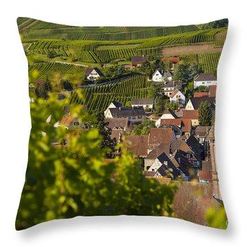 Alsace Morning Throw Pillow by Brian Jannsen