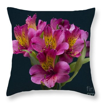 Alstroemeria Cluster Throw Pillow