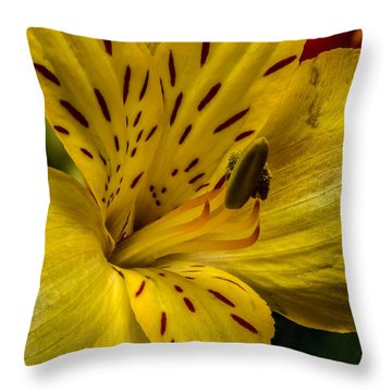 Alstroemeria Bloom Throw Pillow