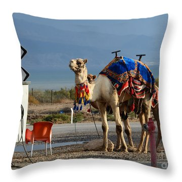 Alternative Transportation Throw Pillow