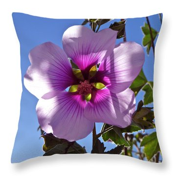 Althea Flower Throw Pillow by K L Kingston