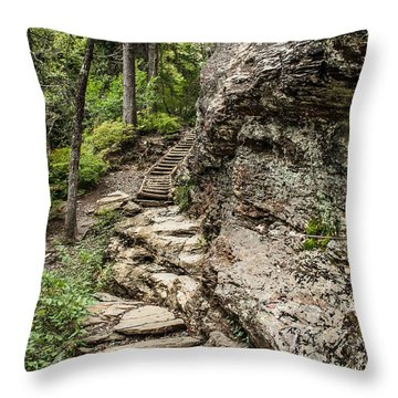 Alum Cave Trail Throw Pillow by Debbie Green