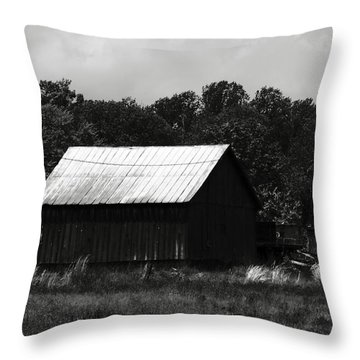 Throw Pillow featuring the photograph Always Gone Too Long by Rebecca Sherman