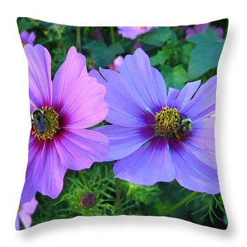 Always Loved Cosmos Throw Pillow by Shirley Sirois