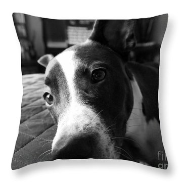 Always Ready To Love You Throw Pillow