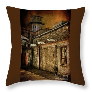 Always Watching Throw Pillow by Lois Bryan