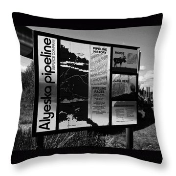 Alyeska Pipeline Throw Pillow by Juergen Weiss