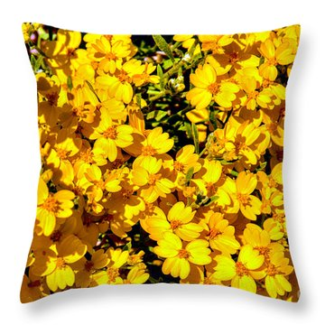 Am I Dreaming About Buttercups Throw Pillow by Bob and Nadine Johnston