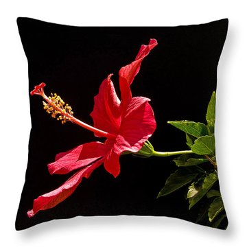 Amapola Throw Pillow