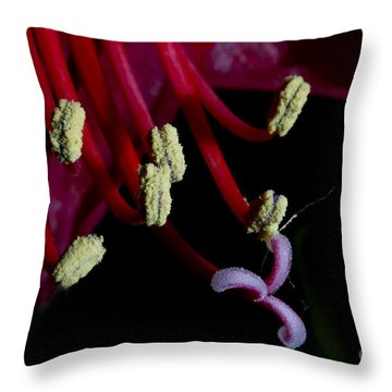 Amarilla Flower   #9398 Throw Pillow by J L Woody Wooden