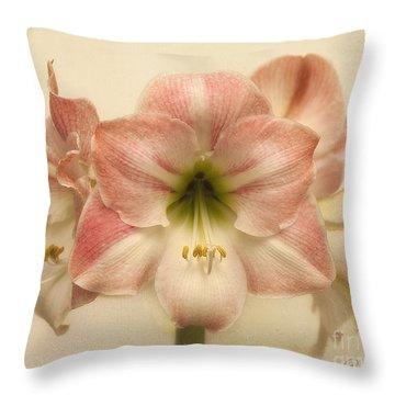 Amaryllis Apple Blossom Throw Pillow
