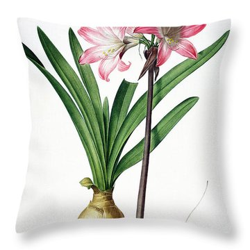 Amaryllis Belladonna From Les Liliacees Engraved By De Gouy Throw Pillow by Pierre Joseph Redoute