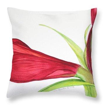 Amaryllis Throw Pillow by Kyong Burke