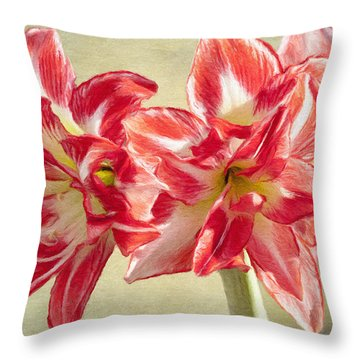 Amaryllis Red Throw Pillow by Jeff Kolker