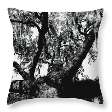 Amazing Oak Tree Throw Pillow
